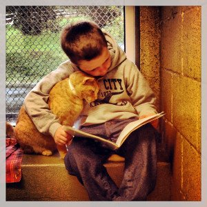Cats, Kids and Books