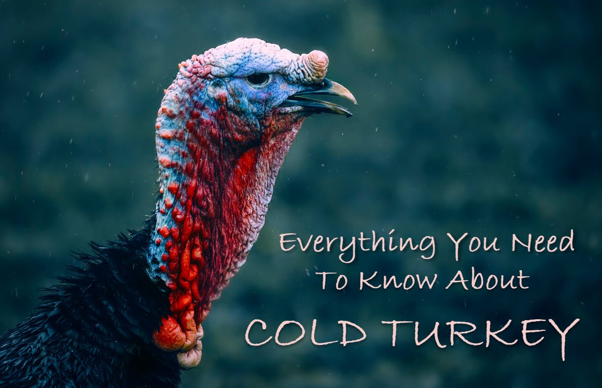 Everything you need to know about cold turkey. The idiom, the writer's app, the song, the movie.
