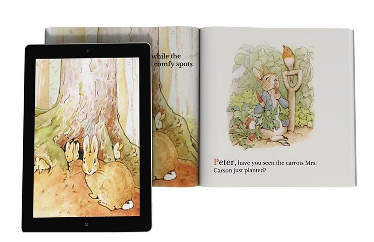 Book Interiors - the design and formatting of children's books is especially important.